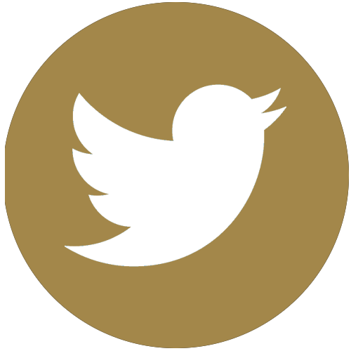 Twitter_Contact Us.png